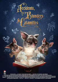 accidents_blunders_and_calamities movie cover