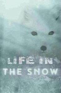 life_in_the_snow movie cover