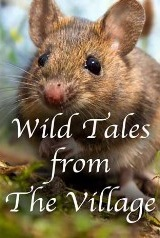 wild_tales_from_the_village movie cover