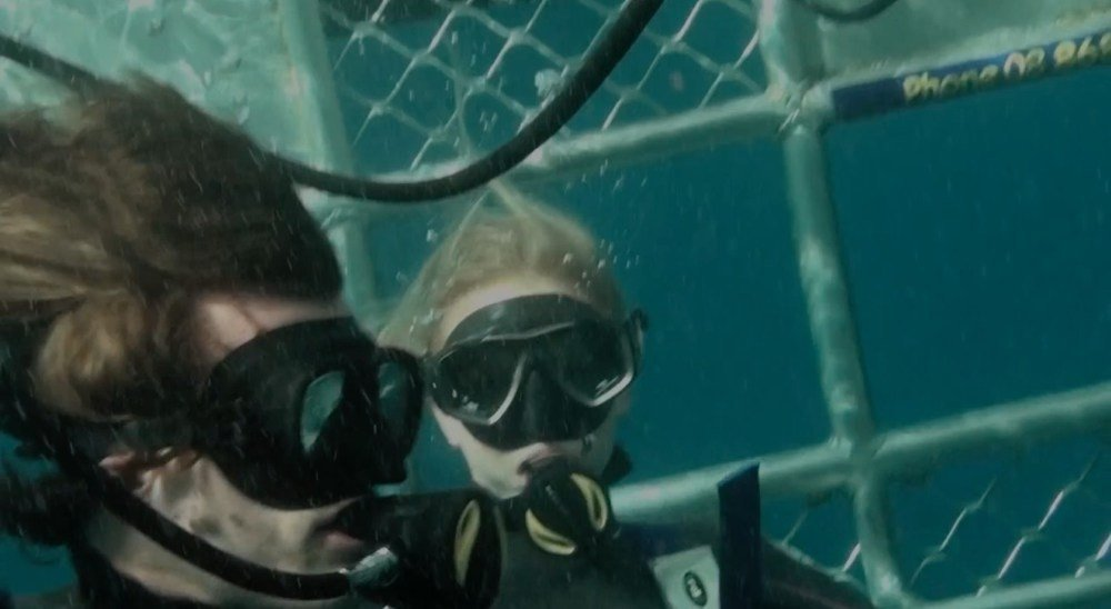 Download open water 3 cage dive movie for ipod iphone ipad in hd divx dvd or watch online - Open water 3 cage dive ...