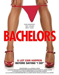 bachelors_the_night_before movie cover
