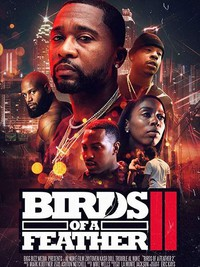 birds_of_a_feather_2 movie cover