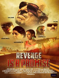 revenge_is_a_promise movie cover