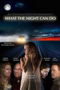 what_the_night_can_do movie cover