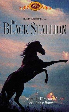 Download The Black Stallion movie for iPod/iPhone/iPad in ...
