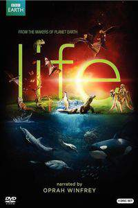 life_2009 movie cover