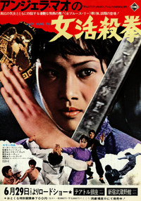 lady_kung_fu_he_qi_dao_hapkido movie cover